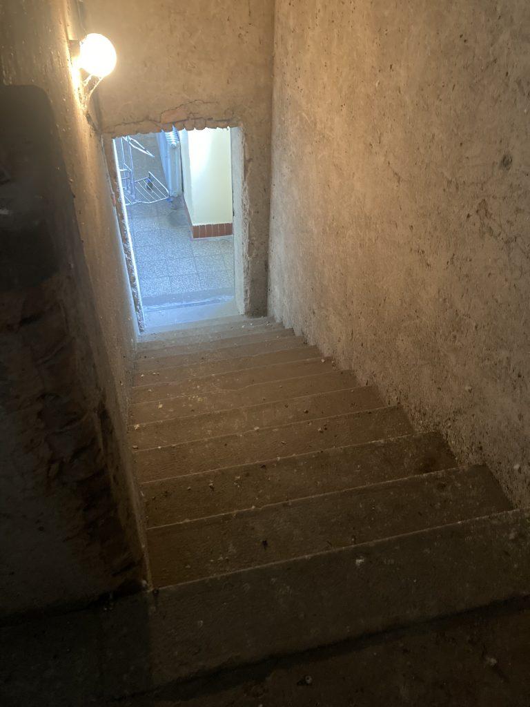Čisté schody od holubiehu trsu
